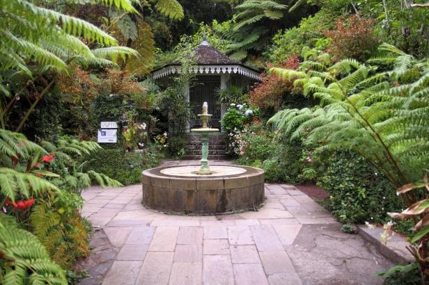 Jardin tropical Maison Folio La reunion