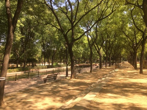 Seville36
